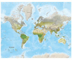 Digital environmental map of The World medium 1499